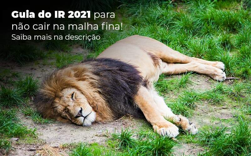 IR 2021 – O Que é Preciso Saber Sobre?